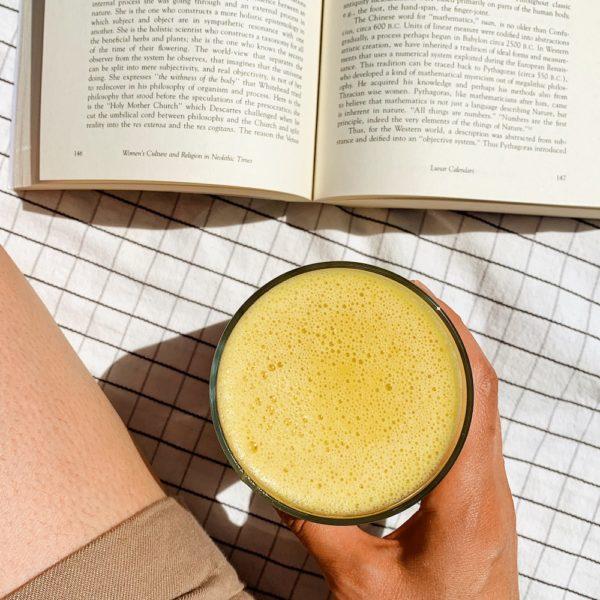 Healthy, Homemade Vegan Orange Julius Recipe